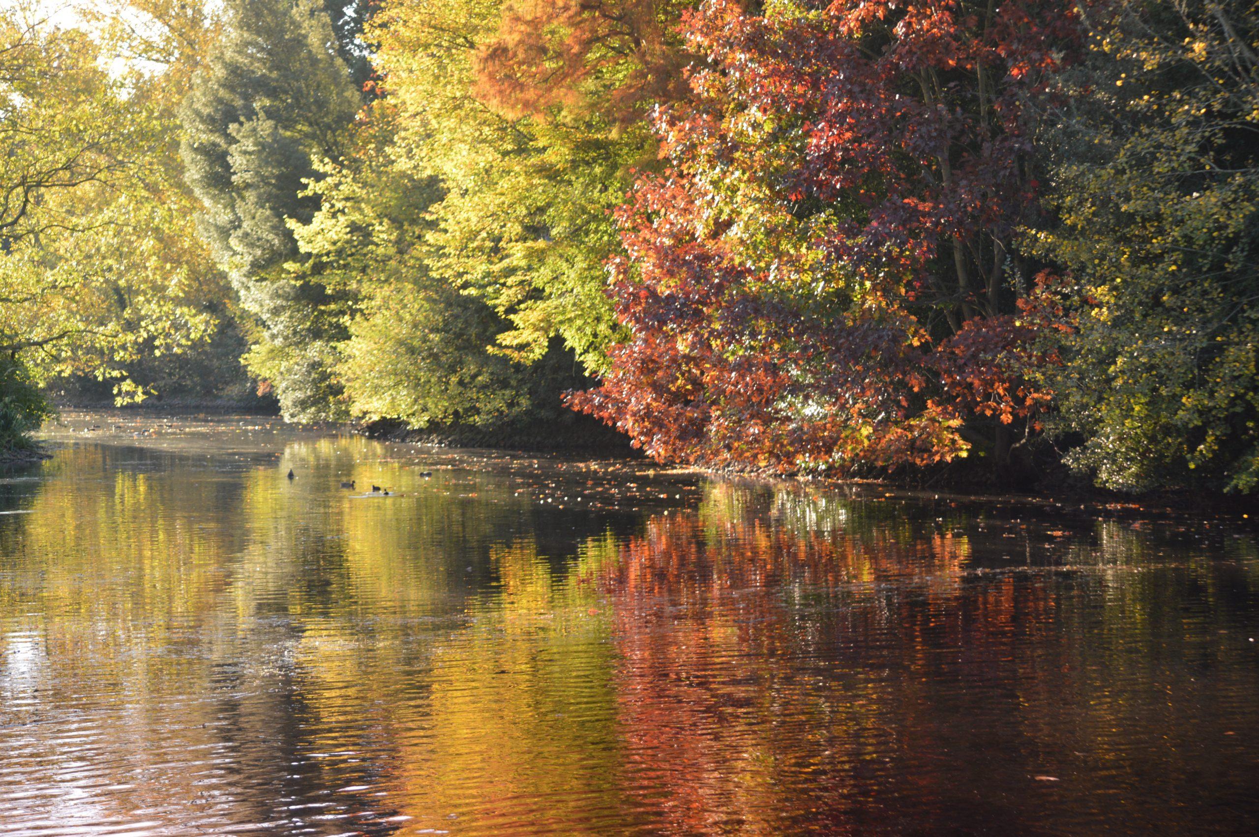 Kew in Autumn
